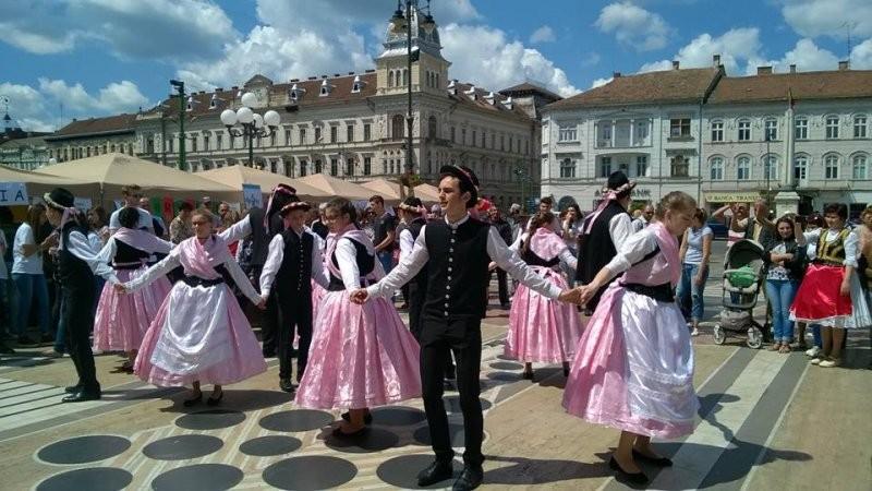 9 Mai - Ziua Europei la Arad
